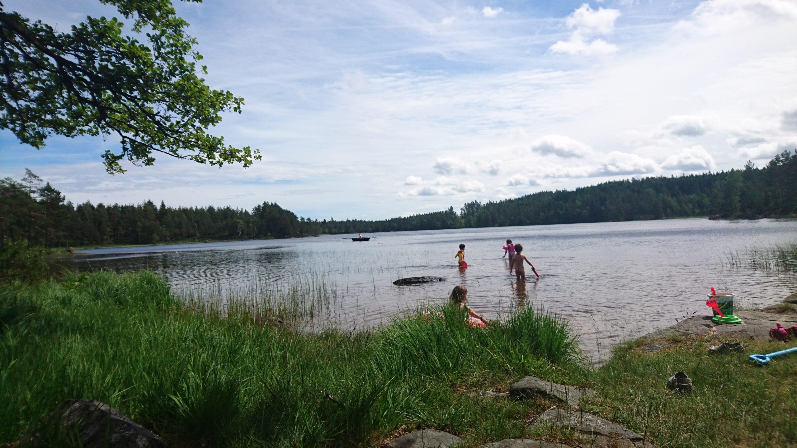 湖で遊びながら学ぶ子どもたち