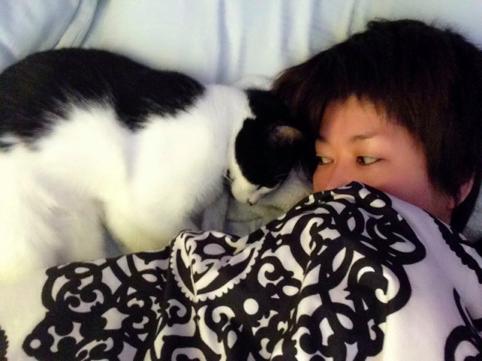 ヤノミとネコ